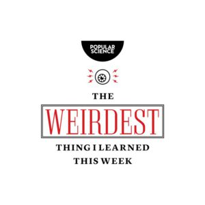 The Weirdest Thing I Learned This Week logo